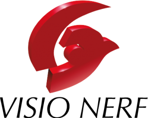 logo-visionerf-retina